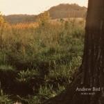 andrew_bird-noble_beast-album_art