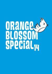 Festivals zum Dritten: Das Orange Blossom Special