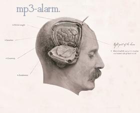 MP3-Alarm! | Die besten Downloads im April
