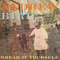 Andrew Bird - Break It Yourself